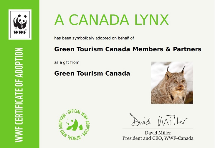 Green Tourism Canada Adopted Us A Lynx Riverside Cabins